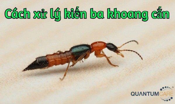 cach-xu-ly-kien-ba-khoang-can