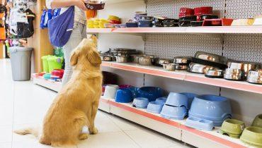 Bảng giá gia công thức ăn, đồ dùng, đồ chơi cho thú cưng